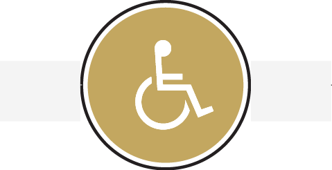 Icon circle with wheelchair